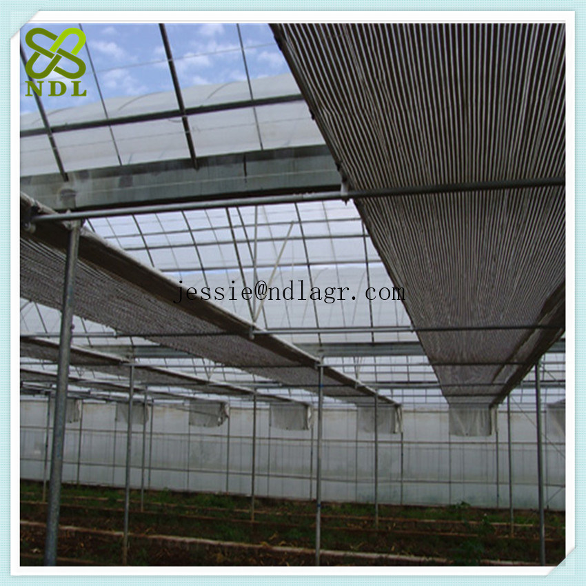 Multi Span Agricultural Film Green Houses for Growing Cucumber
