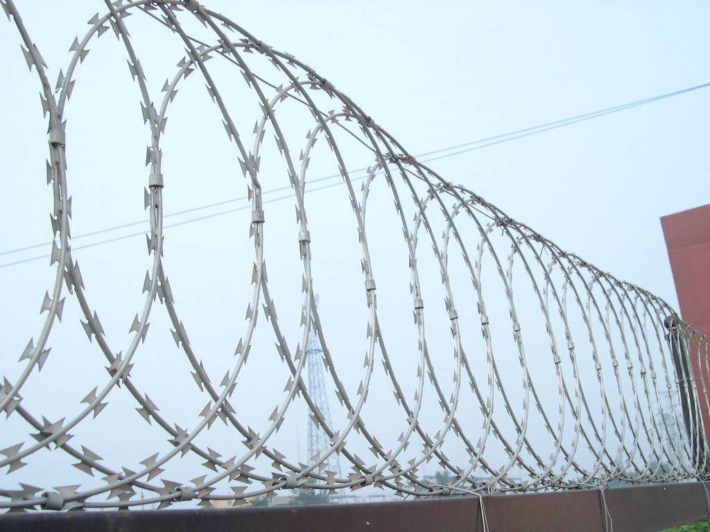 China razor barbed wire steel hot dip