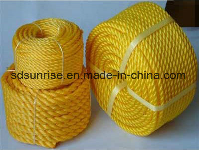 Top Quality PE Rope Made From Virgin Material