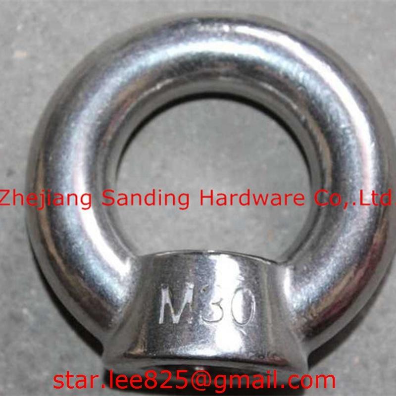 Stainless Steel 316 DIN580 Eye Bolt