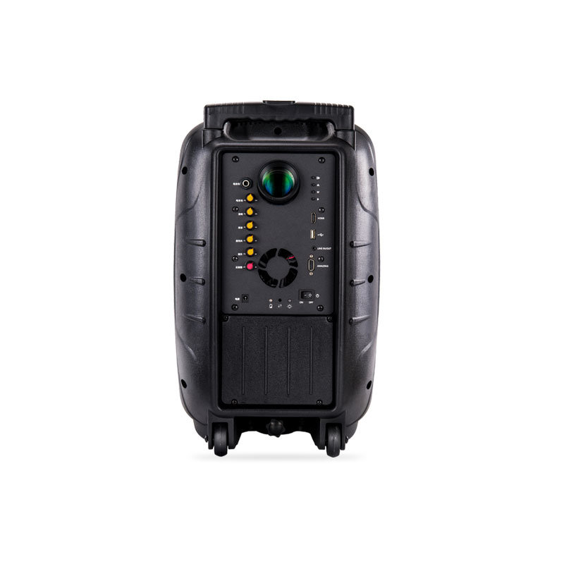 12 Inches Portable Consumer Projection Loudspeaker with Battery