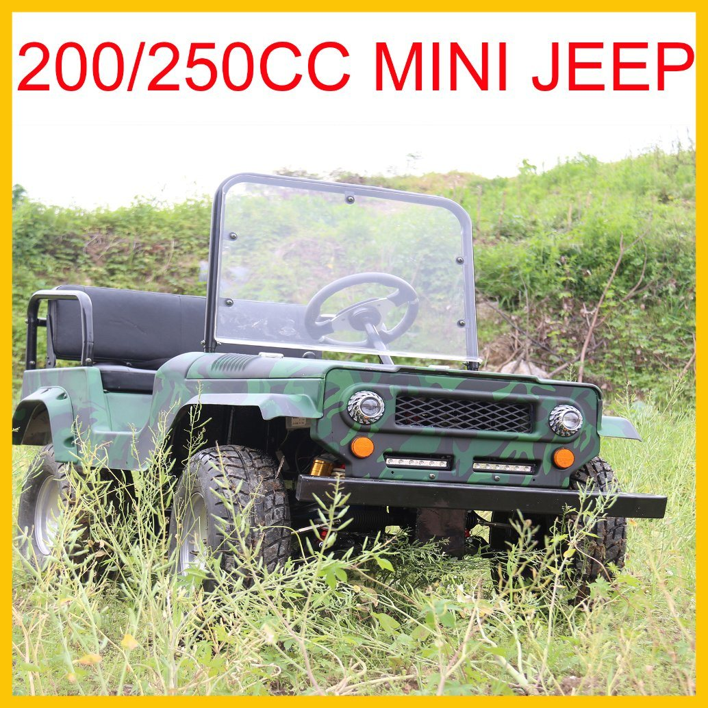 China Newest Mini Jeep for Kids or Adults 110cc 125cc 150cc 200cc 250cc Gas Engine with Ce Approved