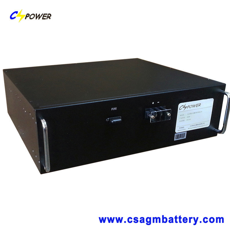 Lithium Iron Phosphate Battery (LiFePO4) 19inch 12V 24V 48V