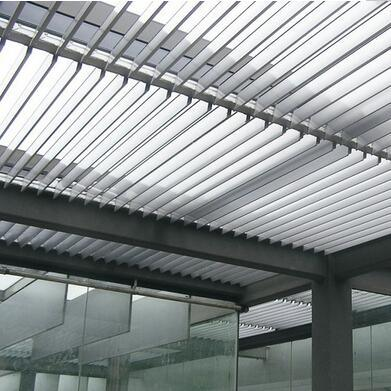 Curtain Wall System Aluminum Sun Shade Window Louver