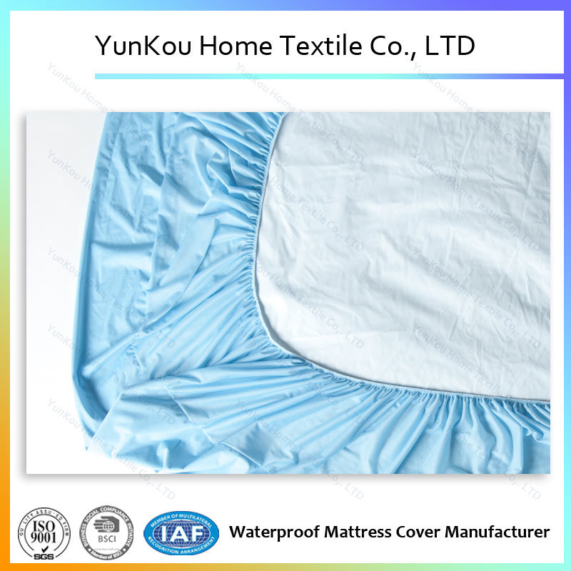 Waterproof Knitting Fabric Mattress Cover in Blue Color Anti-Dustmite