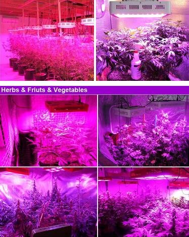2017 LED Grow Light for Garden Greenhouse Plant
