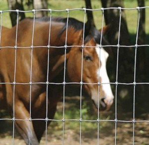 Easy Install Wire Mesh Animal Fencing/Cattle Fence