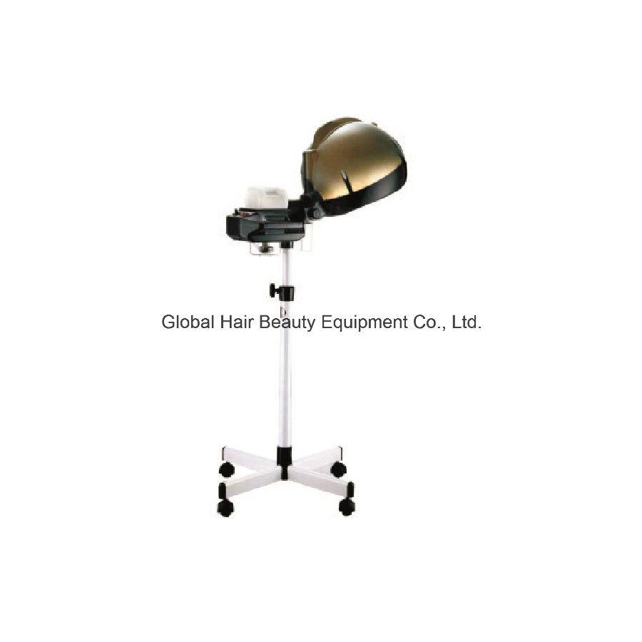 Hair Salon Equipment Hair Steamer (HQ-L982)
