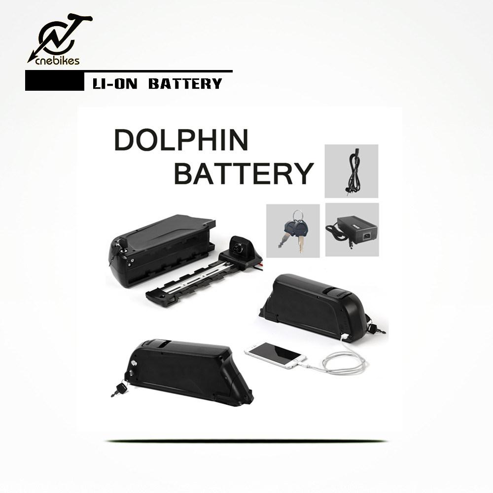 48V 11.6ah Downtube Lithium Battery for Electric Bike