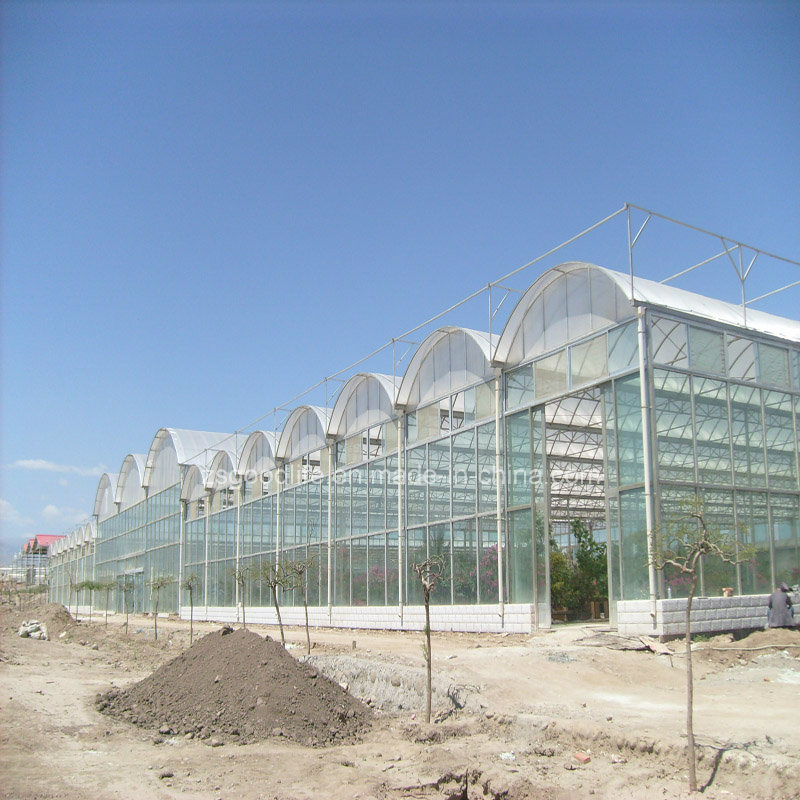 100% Bayer Virgin Material Polycarbonate Hollow Sheet for Greenhouse with High Light Transmission