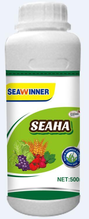 Seaweed Extract Fertilizer (SEAWINNER Concentrated Mushy Fertilizer)