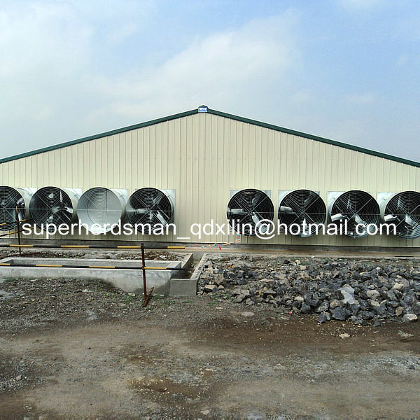 Prefab Steel Structure Poultry House
