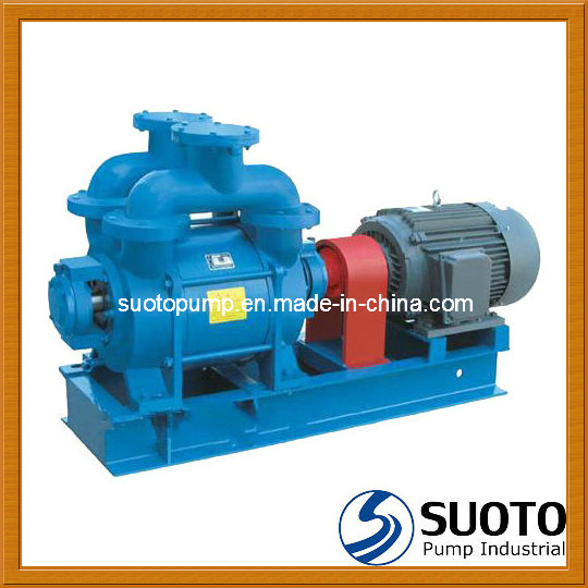 Liquid Ring Vacuum Pump (SK)