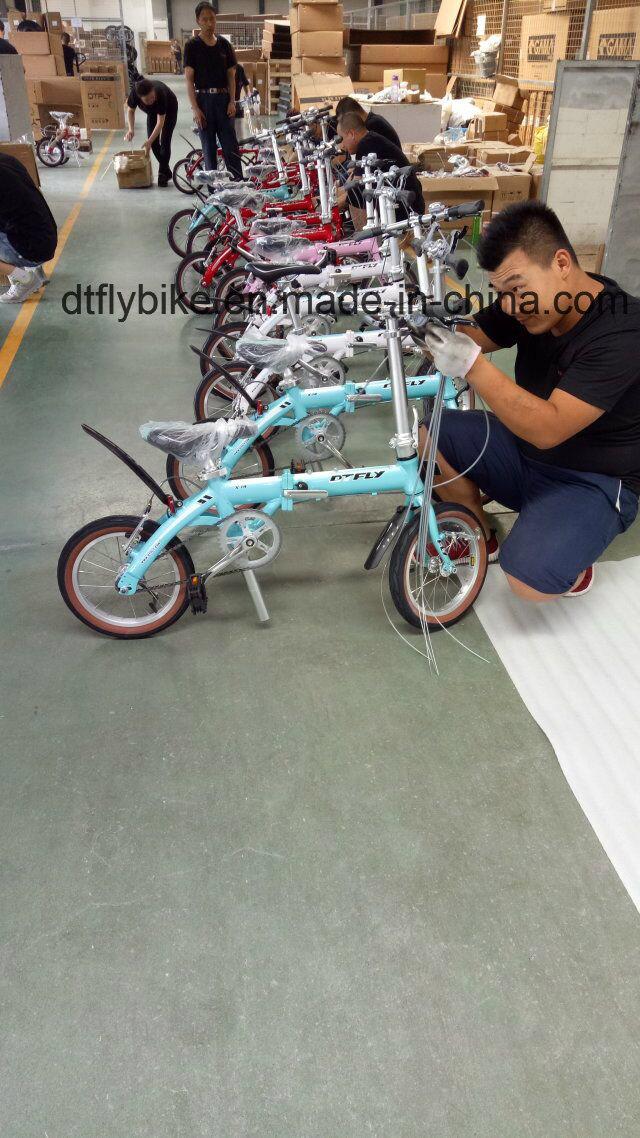 Folding Bike, Alloy Folding, Single Speed,