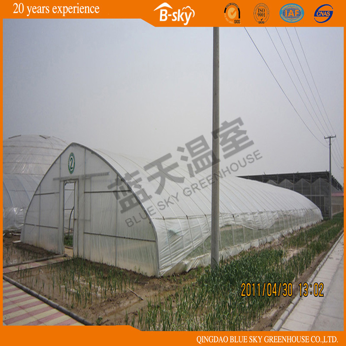 Low Cost Tunnel Greenhouse for Planting