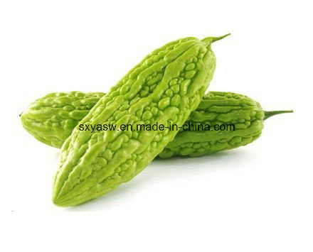 Natural Charantin Bitter Gourd / Melon Extract