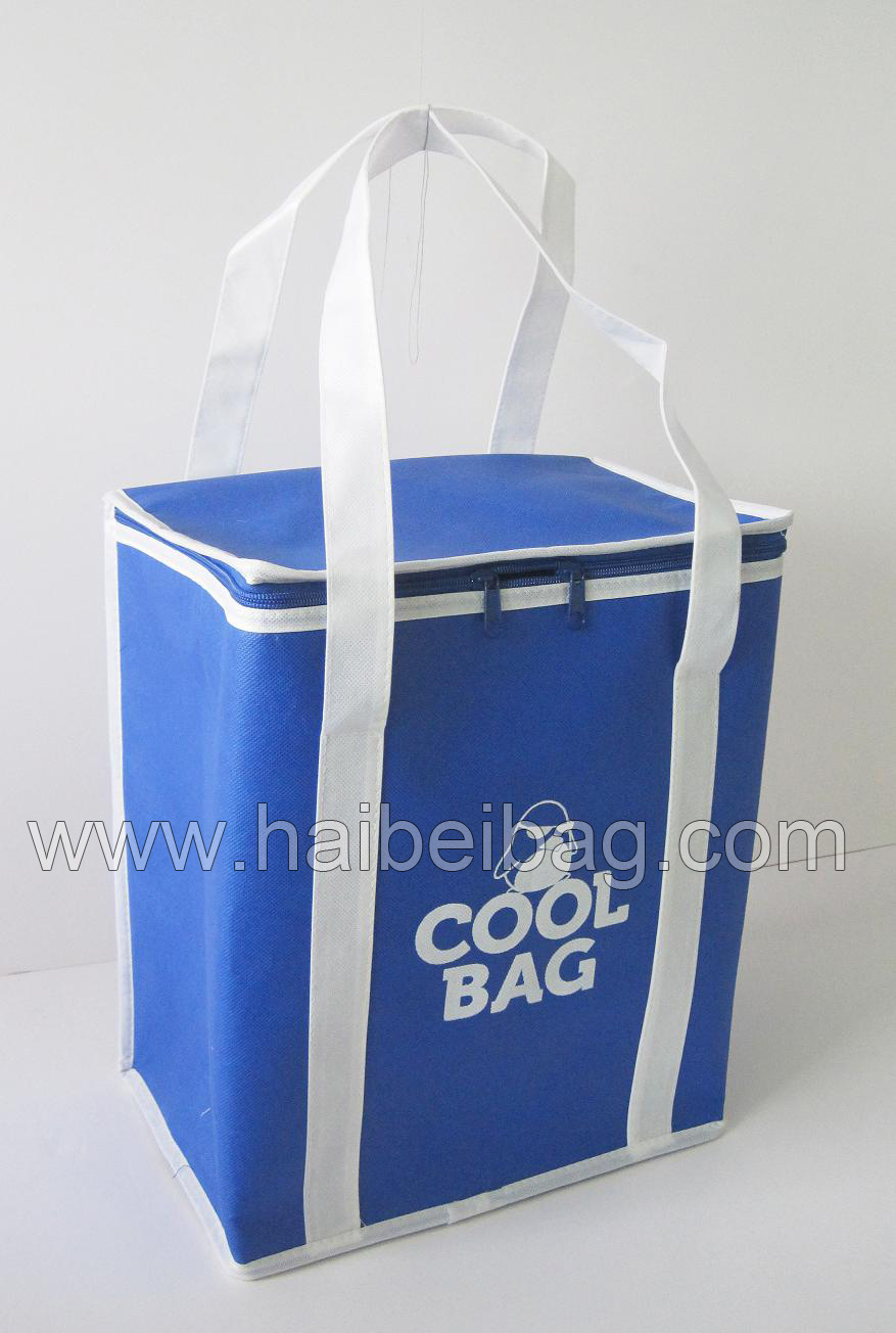 Customized Non Woven Picnic Lunch Cooler Bag for Food, Drink, Beer Can, Ice Cooling, Shopping Box, Promotion (HBCOO-5)