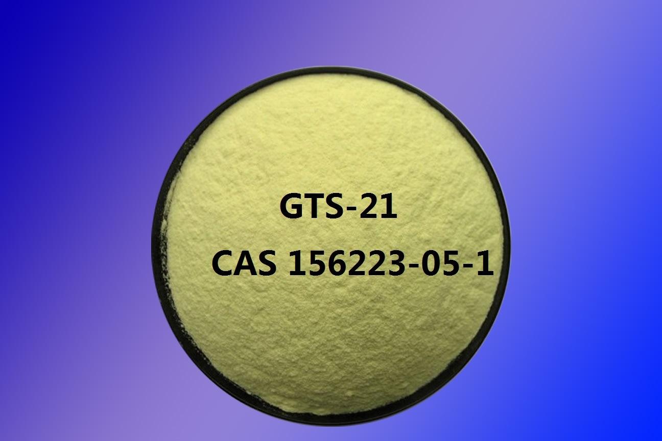 Nootropics Powder Gts-21 CAS 156223-05-1