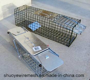 Humane Rabbit Rat Mink Grey Squirrel Small Raccoon Possum Cat Folding Live Animal Cage Trap