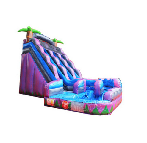 Palm Tree Inflatable Water Slide with Pool Chsl526