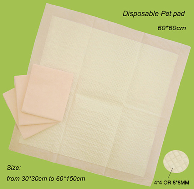 company disposable email incontinence paper product report research Disposable email incontinence paper product disposable email incontinence paper product report research product incontinence research report disposable.