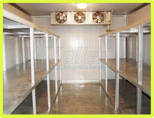 3 Tons Cold Room (Walk in Freezer) for Fish and Meat Storage