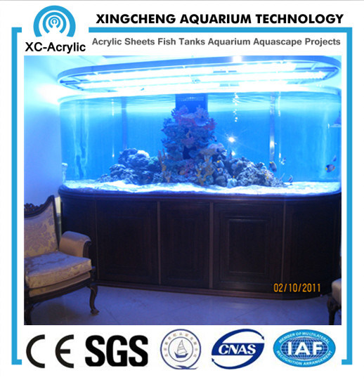 Customized Transparent Large UV Marine Acrylic Fish Tank Price
