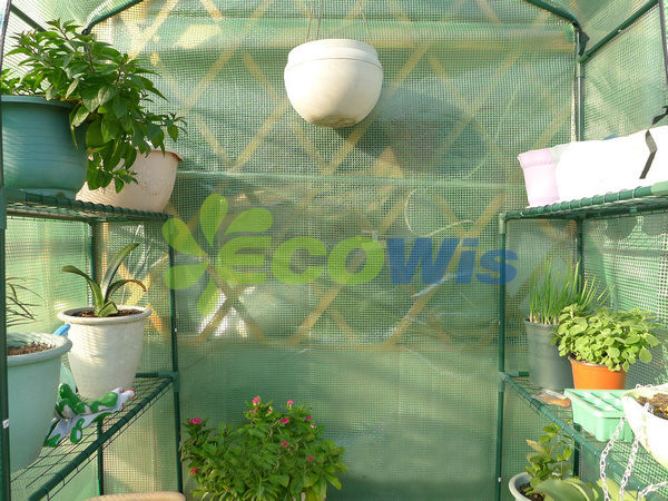 Plastic Walk-in Greenhouse China Manufacturer (HT5112)
