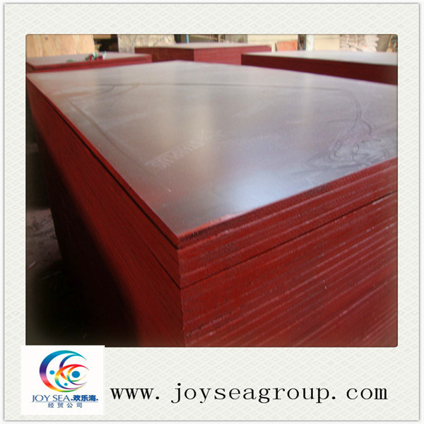 Commercial Plywood and Film Faced Plywood for Packing or Furniture