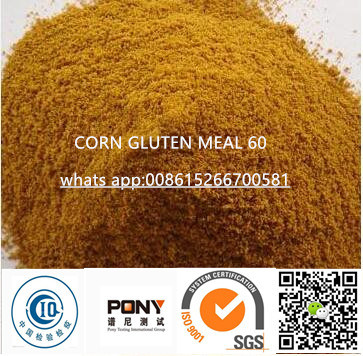 Corn Gluten Meal for Animal Feed Chicken Feed 60% Protein