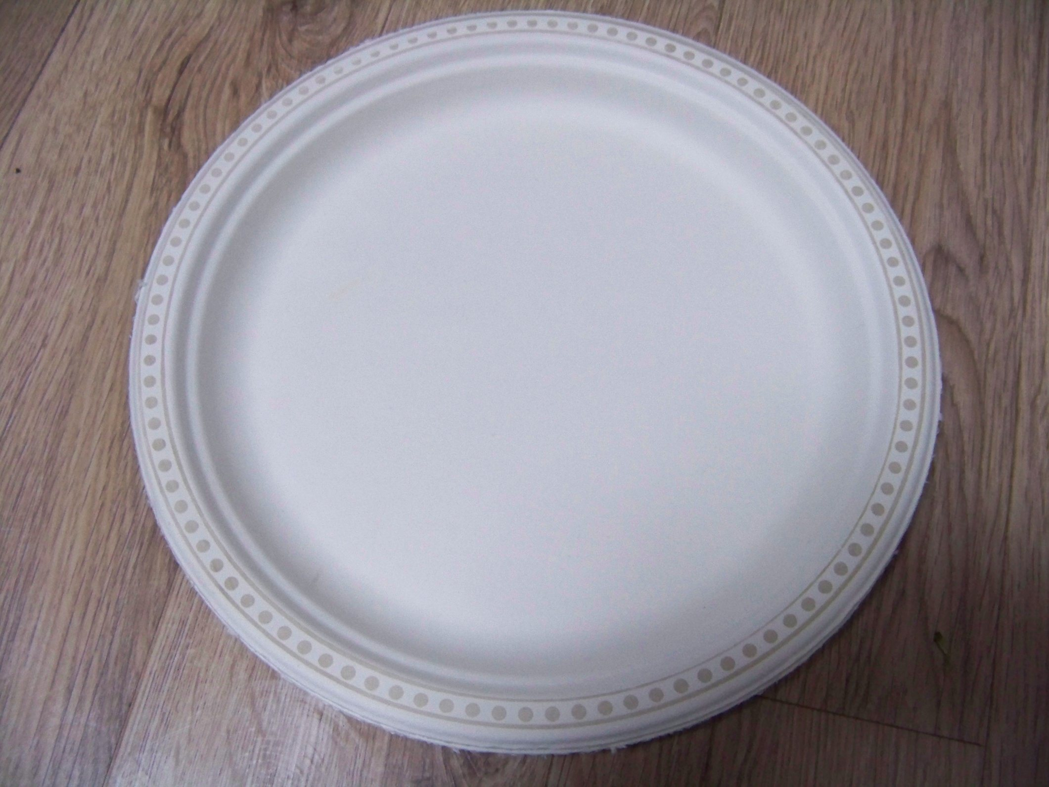 Eco Friendly Disposable Sugarcane Pulp Paper Plate