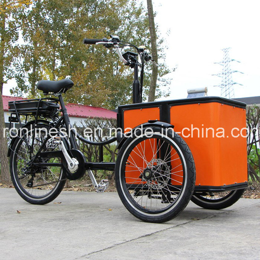 China Bakfiets Cargo Bike 3 Wheel Electric Bicycle Bakfiets Three