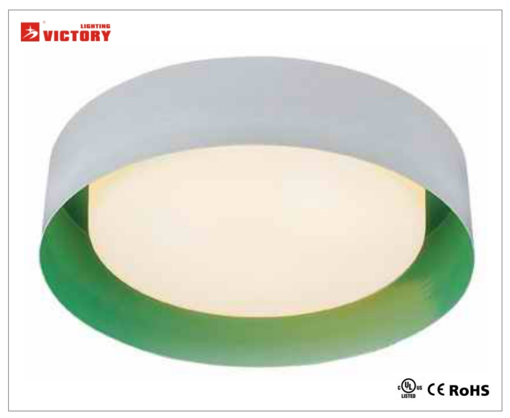 LED Modern High Quality Popular Ceiling Light Lamp with Ce