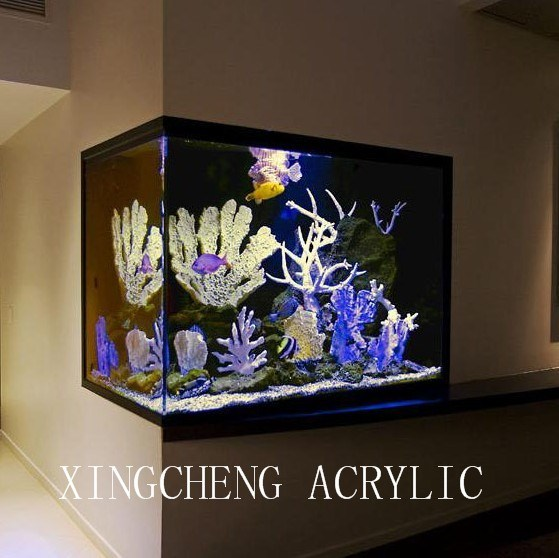 Wall Aquariums Photos & Pictures