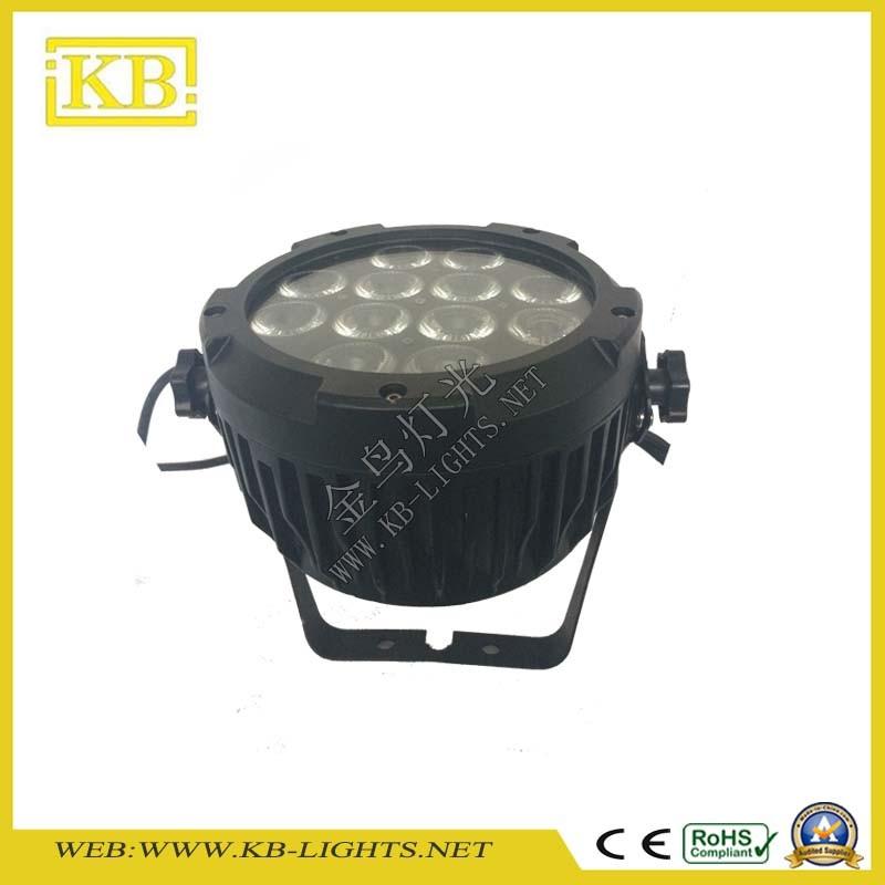 Quality 12PCS*15W Waterproof LED PAR Light (IP65)
