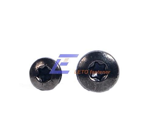 Bn6404-Hexalobular Socket Button Head Screw