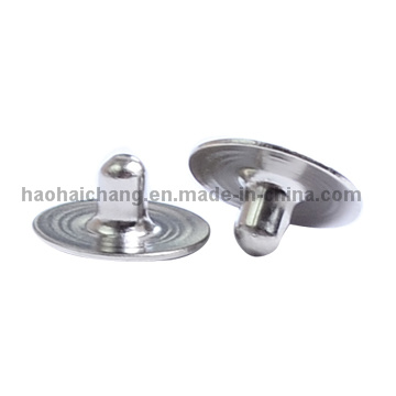 Economic Stainless Steel Rivets for Auto Electronics