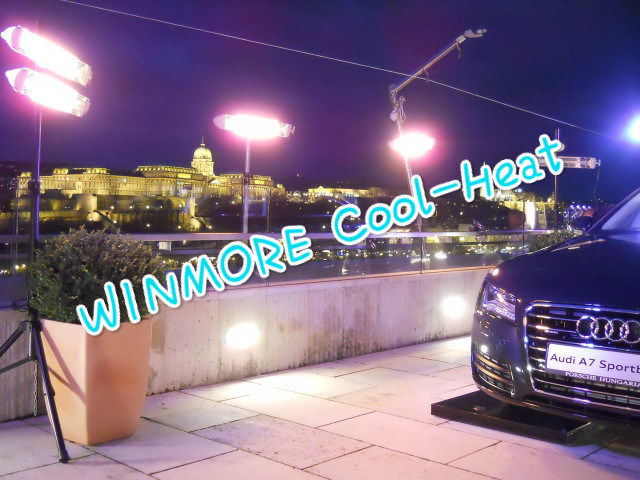 Quartz-Halogen Radiators IP65 Waterproof Heater with Remote Control for Auto Show/Car Parking