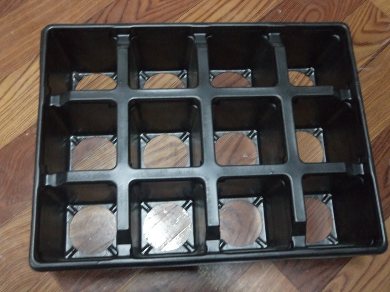 12 Cells Flower Pot Tray Plastic Packing Tray PS Flower Plant Tray 12 Cells Seed Tray