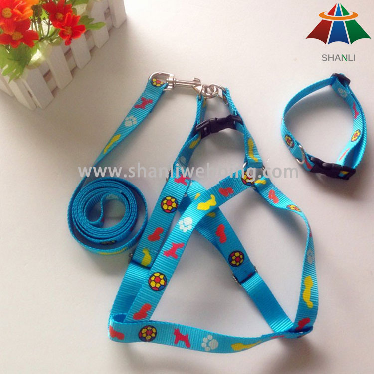 Patterned Printed Dog Collar Leash and Harness
