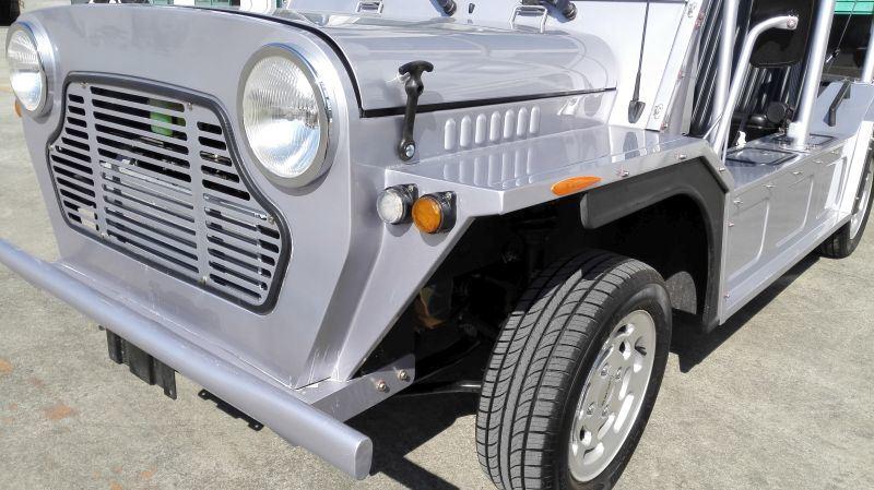 4 Seats Gasoline Engine Tourist Coach Sightseeing Car