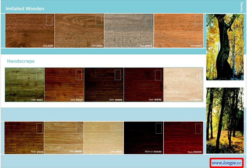 21 beautiful floor colors imageries homes alternative for Laminate floor colors choose