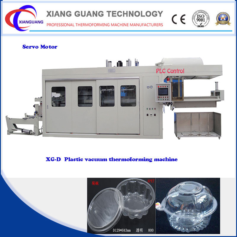 High Speed Popular Servo Motor Automatic Plastic Blister Packing Machine