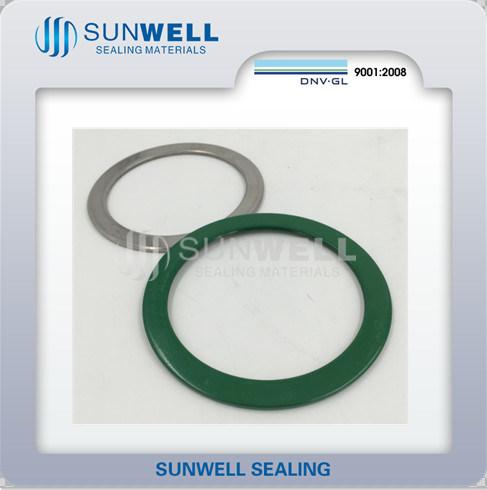 Custom-Made Flat Rings Ss304/316L Non Standard/ASME/JIS/DIN/En Hot Sales (SUNWELL SEALS)