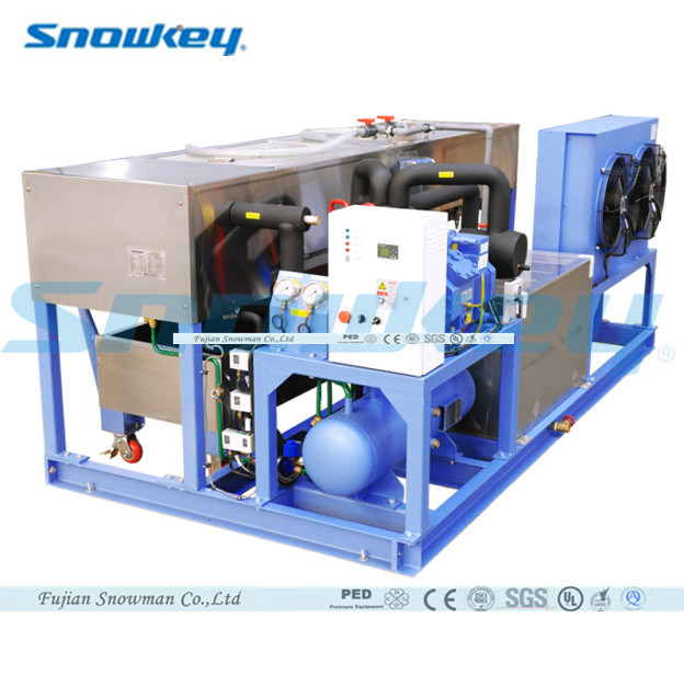 China Top 1 Block Ice Maker