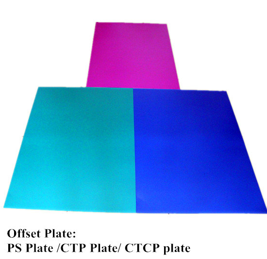 Ctcp Plate for Amsky Cron Basysprint