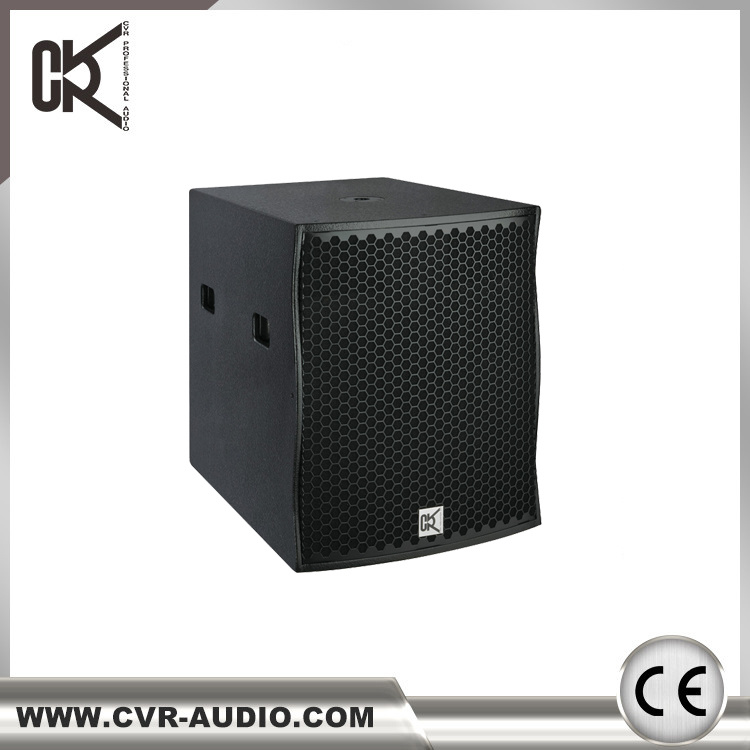 "Active Single 18""DJ Subwoofer Speaker"