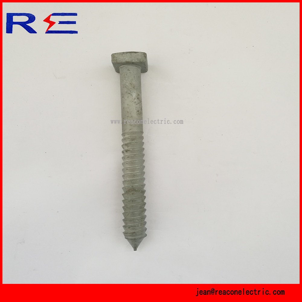 Hot DIP Galvanized U Bolt for Linking Fitting