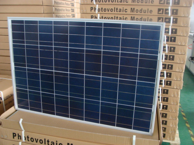 Top Sale 12V Solar PV Panel 100 Watts Price