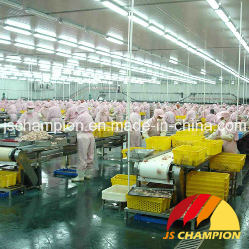 Complete Poultry Slaughterhouse Poultry Slaughtering Machine